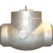 Pressure-Seal-Check-valve