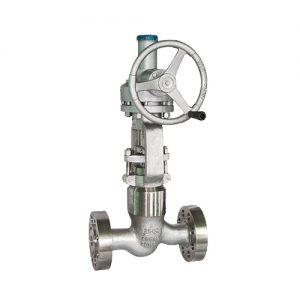 Pressure-seal-globe-valve
