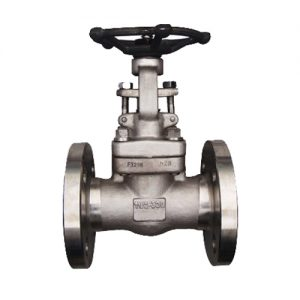 api-602-forged-gate-valve-150lb