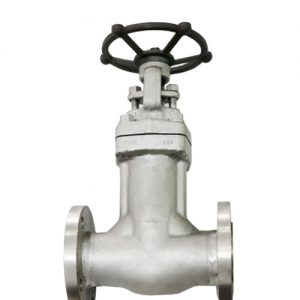 bellow-seal-gate-valves