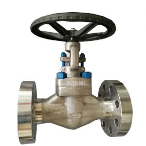 forge-globe-valve-RTJ