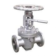 lift-plug -valve2