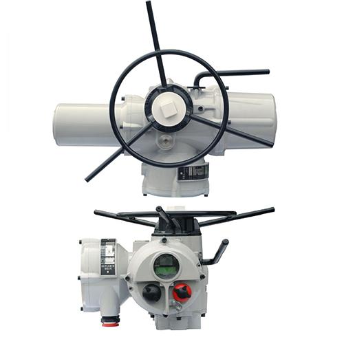 Multi-turn electric actuators