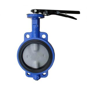 Resilient-Seated-Concentric-Butterfly-Valve