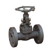 forged-steel-globe-valve-flange