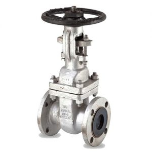API-603-Stainless-Steel-Gate-valve-1